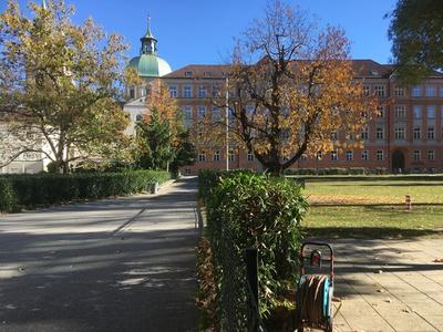 Blick in die Räume zwischen Angerzellgasse, Theologie und AGI, Innsbruck