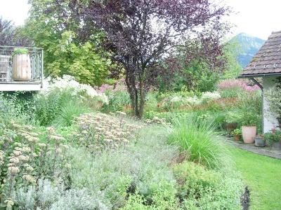 Der Garten des Peter Haas